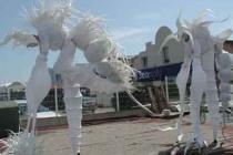 Echassiers blancs