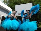 Les Blue-Cats
