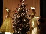 Echassiers féériques lumineux pour décorer un sapin de Noël (75)