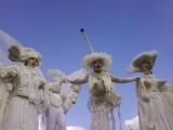 Echassiers blancs aux ailes légères en soirée évènementielle (01)