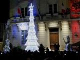 Echassiers lumineux pour une illumination de sapin de Noël (34)